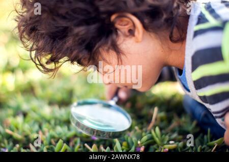 Ein kleiner Junge, der durch Lupe bei Pflanzen im Freien schaut. Kinder-, Entdeckungs- und Botanik-Konzept