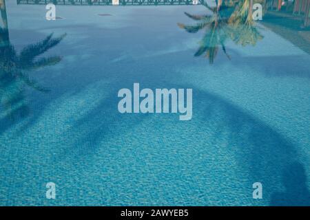 Reflexionen in blauen Schwimmbädern mit tropischen Palmen. Pool mit blauen Mosaikfliesen.