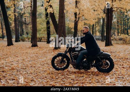 Außenbild des männlichen Motorradfahrers posiert auf schnellem Motorrad, trägt Schattierungen, schwarzen Mantel, genießt Fahrt im Herbstpark, atmet frische Luft, bewundert die Natur d - Stockfoto