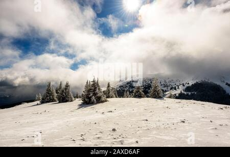 Tolle Winterlandschaft mit schneebedeckten Bäumen. Frostiger Bergtag, exotische winterliche Szene. - Stockfoto