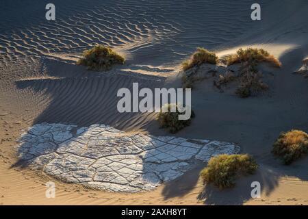 Mesquite flache Sanddünen, Dünen, Tod Valley National Park, Kalifornien, USA. Alte Spuren von getrocknetem Schlamm - Stockfoto