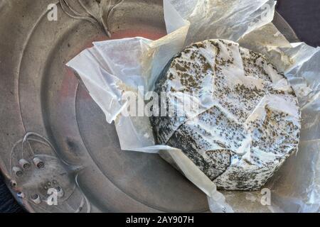 Französischer Weichkäse mit grauem Schimmel auf einer jugendstil-zinn-Platte - Stockfoto