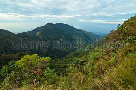 Panorama-Blick auf die Landschaft auf den Sonnenaufgang Wolke Waldwelten Ende im Horton Plains National Park Sri Lanka. - Stockfoto