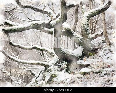 Wasserfarbengemälde von Schnee bedecken verdrehte Winterbäume und Äste in einem Hangwald - Stockfoto