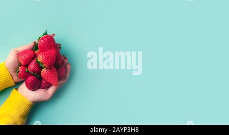 Erdbeeren in Händen Panorama-Mock-up mit Platz für Text - Stockfoto