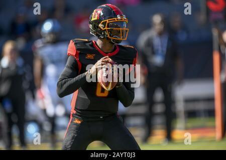 Carson, Kalifornien, USA. Februar 2020. 8 Josh Johnson fiel während des Spiels XFL Dallas Renegades gegen Los Angeles Wildcats am 16. Februar 2020 zurück. Credit: Dalton Hamm/ZUMA Wire/Alamy Live News