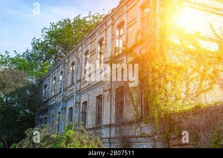 Alte zerstörte verlassene zweistöckige Ziegelsteinfassade mit brockenglasfenstern, die von grünem Efeustein überwuchert sind. Mystisch finsterer böser urbaner Hintergrund