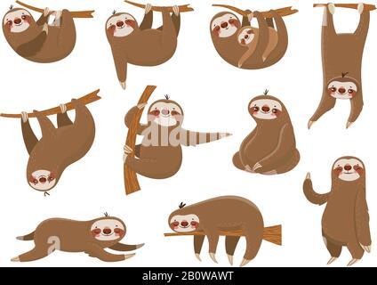 Süße Cartoon-Faultiere. Adlige Regenwaldtiere, Mutter und Baby auf Ast, lustige Faultiere schlafen auf Dschungelbaumvektor gesetzt - Stockfoto