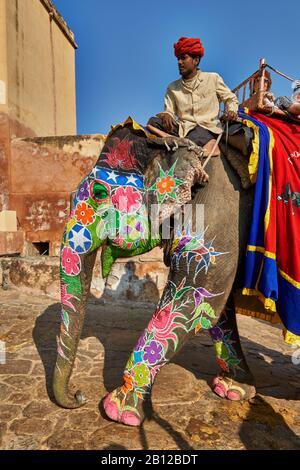 Bunt bemalte indische Elefanten bringen Touristen in das Amer-Fort, Jaipur, Rajasthan, Indien - Stockfoto
