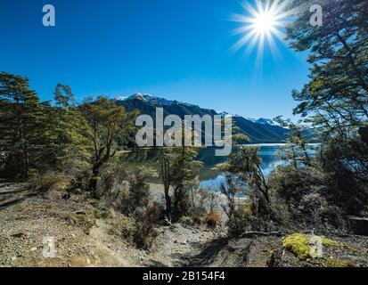 Die Vegetation säumen die Ufer des South Mavora Lake in Neuseeland - Stockfoto