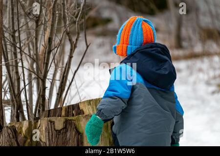 Ein Kleinkind auf einem Naturweg untersucht im Winter einen Baumstumpf. Er trägt einen warmen Mantel, Gehrungen und einen Strickmütze, während er den verschneiten Wald erkundet. - Stockfoto
