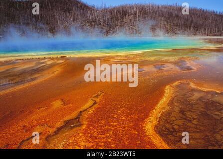 USA. Wyoming. Yellowstone National Park. Grand Prismatic Spring. - Stockfoto