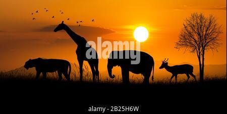 Große Gruppe von African Safari Tiere. Wildlife Conservation Konzept - Stockfoto