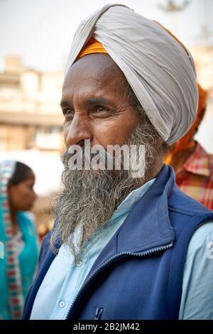 Typischer Sikh-Mann mit Turban und Bart im Shish Ganj Gurudwara Sikh-Tempel in Alt-Delhi, Delhi, Indien - Stockfoto
