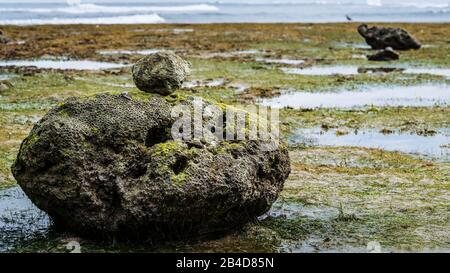 Zen-ähnliche Steine Mit Moos am Strand bei Low Tide, Nice Water Reflection, Nusa Dua, Bali, Indonesien. - Stockfoto