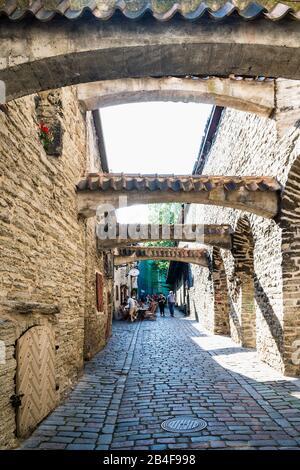 Estland, Tallinn, Altstadt, Katariina Guild, Katarinenpassage, Historisches Sehenswürdigkeit - Stockfoto