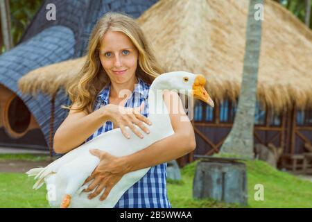 Junge glückliche Frau hält lustige Bauernhof-Haustier in Händen - große weiße Hausgans. Tagestour in den Sommerferien der Familie mit Kindern. Beliebtes Reiseziel - Stockfoto