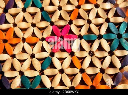 Mehrfarbiges Blumenmuster mit von Sonnenlicht beleuchteten Holzblüten - Stockfoto