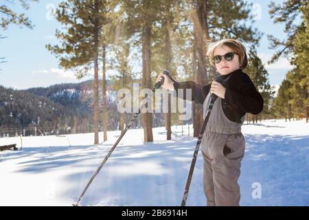Ein sechsjähriger Junge im Wald, der Skistöcke hält - Stockfoto