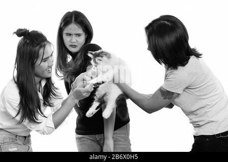 Drei junge asiatische Frau Freunde spielen mit süße Katze mit einem Freund suchen Angst - Stockfoto