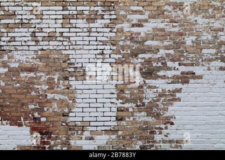 Die Schälchen malen eine alte Gartenmauer aus Backstein ab - Stockfoto
