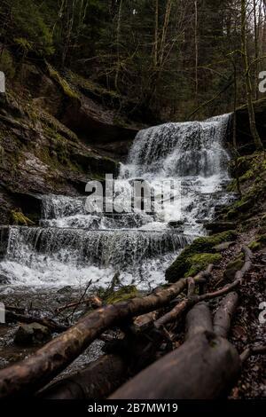 Kleiner Wasserfall im Canyon inmitten des grünen Waldes - Stockfoto