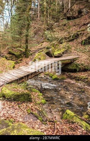 Kleine Brücke über den Bach entlang des Canyons mitten im grünen Wald - Stockfoto