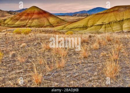 Painted Hills in der Morgendämmerung, John Day Fossil Beds National Monument, malte Hügel Einheit, Oregon, USA - Stockfoto
