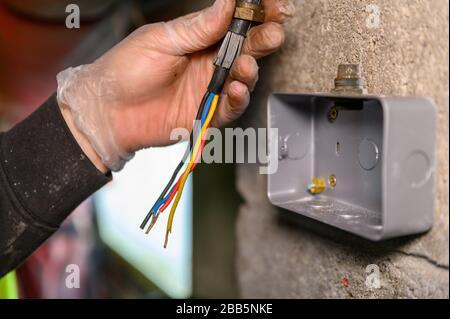 Elektriker, der das Hauptstromkabel bereithält, damit es in die Steckdose an der Wand eingesteckt werden kann - Stockfoto