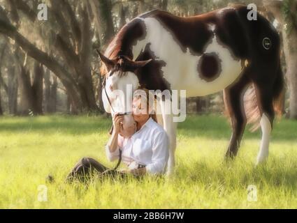 Ein zärtlicher Moment mit reifer Frau und einem Hengst aus American Paint Quarter Horse unter großen Live Oak Trees - Stockfoto