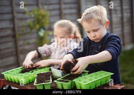 Zwei Kinder im Grundschulalter Pflanzen Samen in grünen Plastiksaattabletten