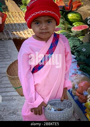 Wunderschönes buddhistisches Noviziat bittet um Almosen auf einem Markt. Junges Mädchen in traditionellen rosafarbenen Gewändern, das direkt zur Kamera schaut - Stockfoto