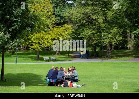 Frauen, die ein Picknick auf einem Park machen - Stockfoto