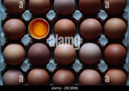 Viele ganze braune Eier und ein mit Eigelb gebrochenes in einer umweltfreundlichen Kartonbox