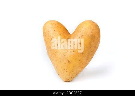 Kartoffel in Herzform auf einem weißen - Stockfoto