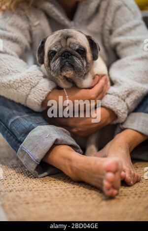 Homan Menschen und Hund lieben Konzept - Erwachsene kaukasische Frau umarmen mit Zärtlichkeit ihren alten Puppenstupp, der zu Hause auf dem Boden sitzt - beste Freundin und Freunde - Stockfoto