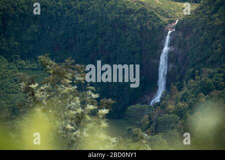 Schöne Wasserfälle in Maskeliya, Sri Lanka - Stockfoto