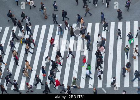 Menschen, die Shibuya Crossing, Shibuya, Tokio, Honshu, Japan, Asien überqueren