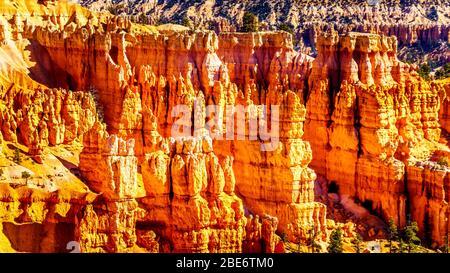 Sonnenaufgang über den Vermilion Coloured Pinnacles, Hoodoos und Amphitheatern entlang des Navajo Loop Trail im Bryce Canyon National Park, Utah, USA - Stockfoto
