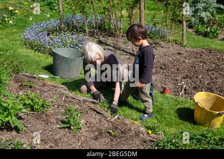 Frau und Kleinkind gärtnern im Frühlingssonne während Covid 19 Aussperrung in einem Landgarten in Carmarthenshire Wales Großbritannien April 2020 KATHY DEWITT - Stockfoto