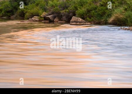 Der Colorado River in der Nähe von Cove Canyon Camp (Meile 175), Grand Canyon National Park, Arizona, USA - Stockfoto
