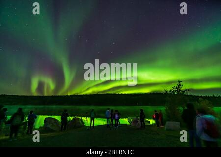 Eine Gruppe von Touristen nimmt die Nordlichter am Madeline Lake, Kanada, ein. - Stockfoto