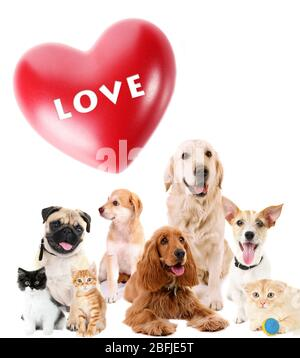 Niedliche Haustiere mit großem Herz auf hellem Hintergrund