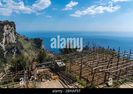 Der Weg der Götter: Sentiero degli Dei. Unglaublich schöner Wanderweg hoch über der Amalfitana oder Amalfi Küste in Italien, von Agerola nach Positano. März 2019. Landwirtschaft auf der Klippe - Stockfoto