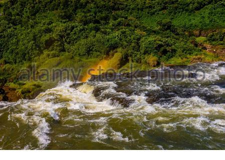 Iguazu-Fälle (Iguacu in Portugiesisch), an der Grenze von Brasilien und Argentinien. Es ist eines der neuen 7 Naturwunder und gehört zum UNESCO-Weltkulturerbe Sit - Stockfoto