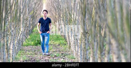 Ein junger Mann geht durch eine Reihe von Bäumen in einem Wald von einem Mann gepflanzt, um die Natur wiederherzustellen - Stockfoto