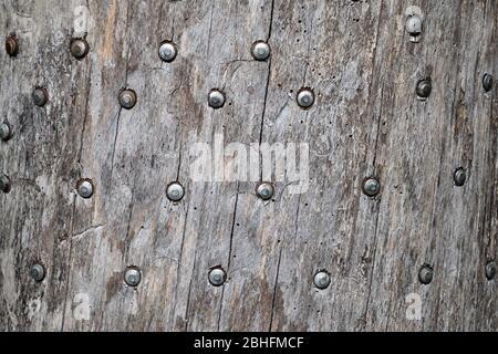 Hintergrund Textur Nägel in den Baum gehämmert. Nagelmützen. - Stockfoto