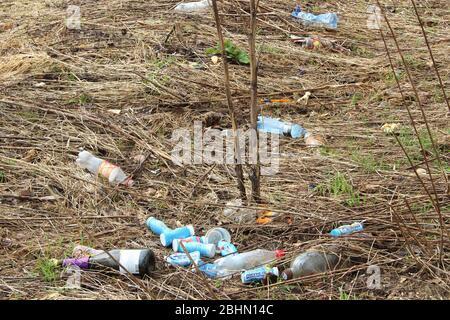 Plastikmüll liegt auf dem trockenen Gras. Das Konzept von Recycling, Ökologie und Umweltverschmutzung.