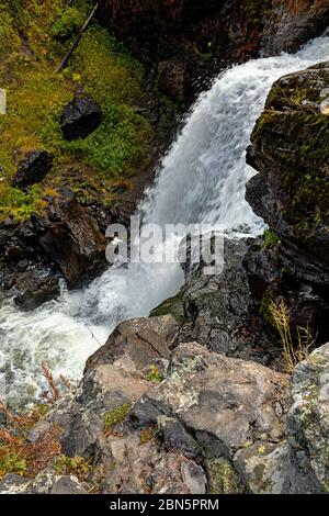 WY04288-00...WYOMING - Moose Falls auf Crawfish Creek im Yellowstone Nationalpark. - Stockfoto