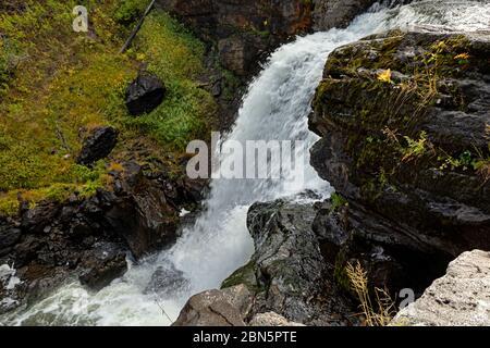 WY04289-00...WYOMING - Moose Falls auf Crawfish Creek im Yellowstone Nationalpark. - Stockfoto